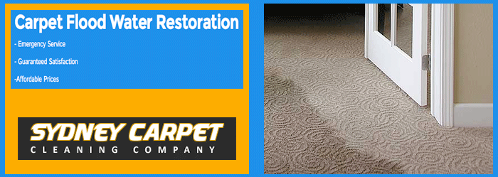 CARPET FLOOD DAMAGE RESTORATION Woolooware