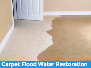 Carpet Flood Water Restoration Mount White