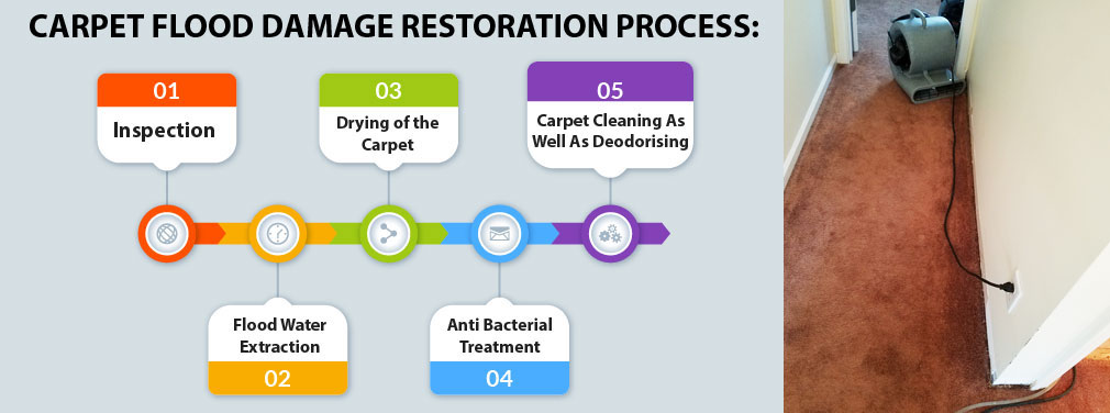 Carpet Flood Water Damage Restoration Process
