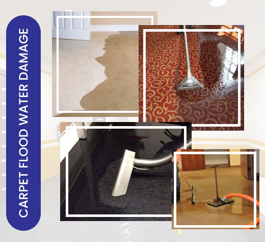 Carpet Flood Water Restoration Sydney