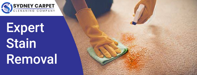 Carpet Stain Removal Sydney